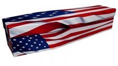 3654 - American flag