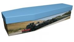 3659 - Steam train