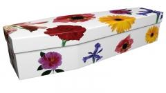 3686 - Summer flowers