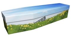 3737 - Daffodils