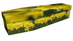 3886 - Daffodils 1