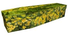 3887 - Daffodils 2