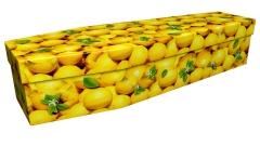 3911 - Lemons