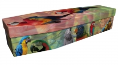 3991 - Parrots and Macaws