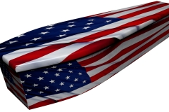 4066 - American flag