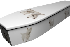4134 - West Highland Terriers